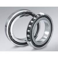 Single row cylindrical-roller bearings